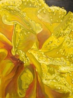 c-wetflower