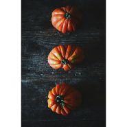 Lauren Allen - hierloom tomatoes