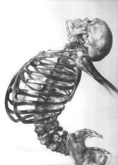 skeleton dancer