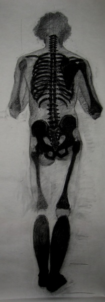 skeleton double with graphite and india ink