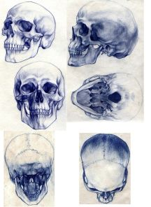 skeleton skull blue ball point pen