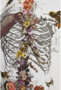 skeleton with flora and birds