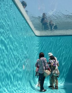 above and below the pool