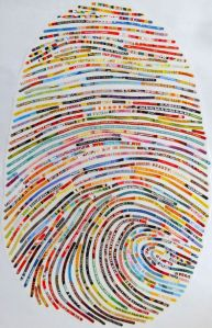 order disorder fingerprint