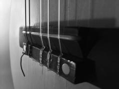 Guitar No. 4