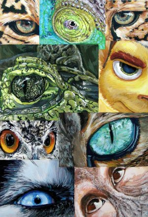 by GrizzlySlippers https://grizzlyslippers.deviantart.com/art/Lots-of-Animal-Eyes-159958013