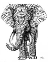 zentangle elephant