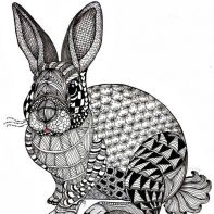 zentangle rabbit