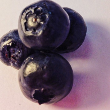 blueberries 4