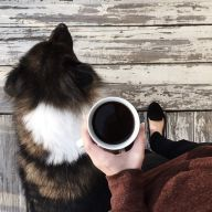 coffee and dog morning