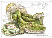 crocodill