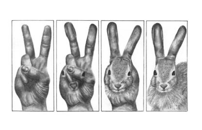 hands to bunny