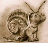 hippo snail