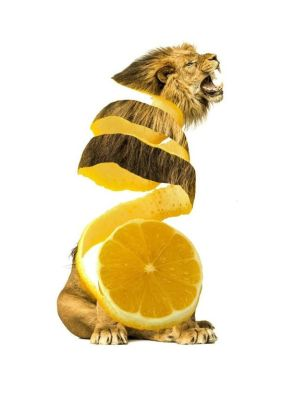 lion fruit