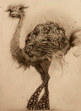 ostrich + turtle