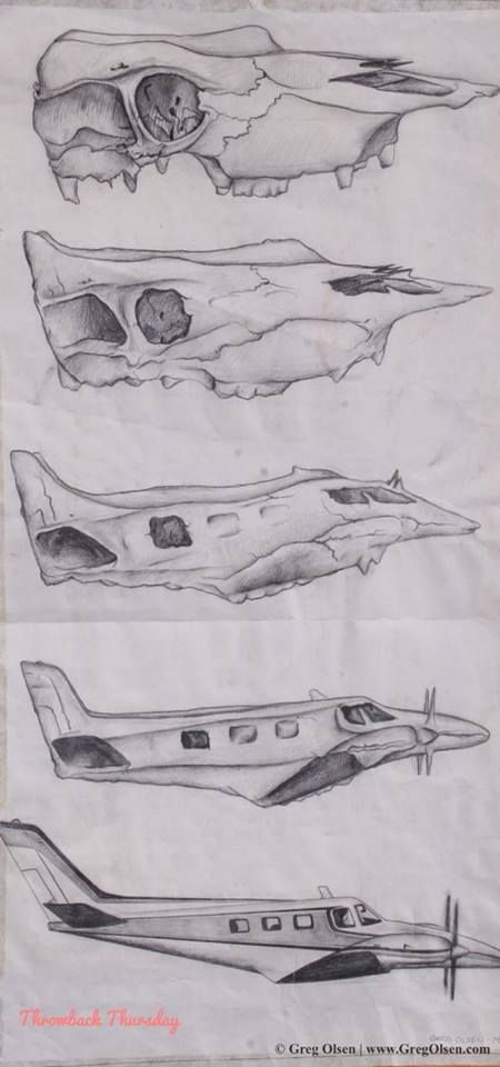 skull to airplane