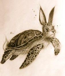 turtle bunny mishmash
