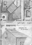 1 pt city birds eye view