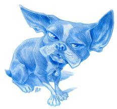 boston terrier super stink wrrior