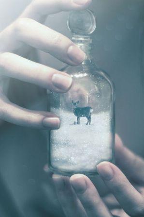 world in a jar 2