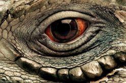 eye - reptile 6