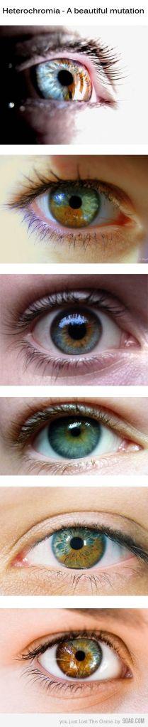 human eyes 1