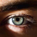 human eyes 17