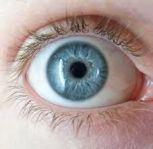 human eyes 20