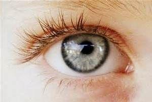 human eyes 3