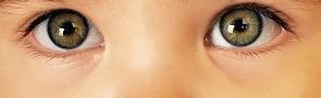 human eyes 4
